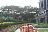 中洲华府A区3(屋顶花园)3