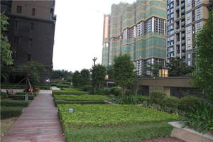 中洲华府A区(屋顶花园)